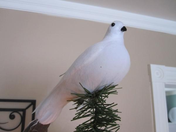 weisse-taube-auf-dem-tannenbaum - wunderschöne dekoration