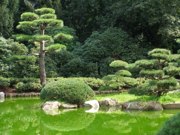 wunderbare--Gärten-in-Japanischem-Stil-Idee
