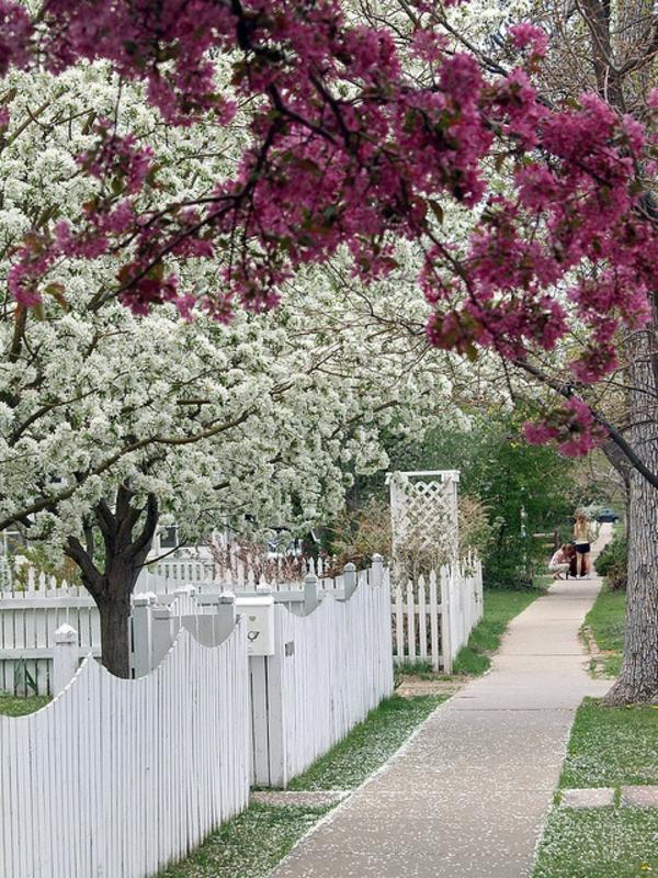 wunderbarer-hölzerner-Gartenzaun-in-Weiß