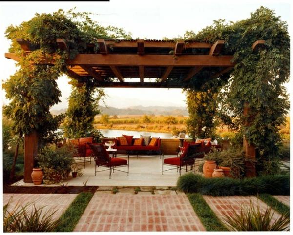 wunderschöne-kletterpflanzen-für-balkon