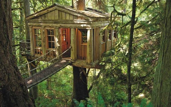 Wald-Baum-im-Haus-Ideen-