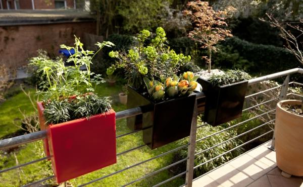 Blumenkästen-für-den-Balkon -verschiedene-Farben-