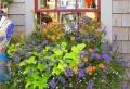 Blumenkasten für Balkon – wunderschöne Bilder!