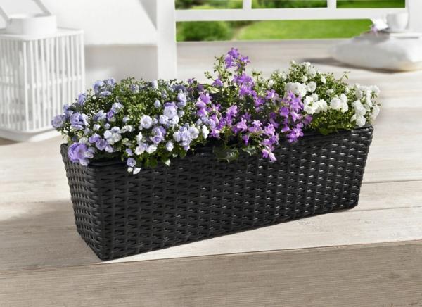 Blumenkasten-für-Balkon-in Lila
