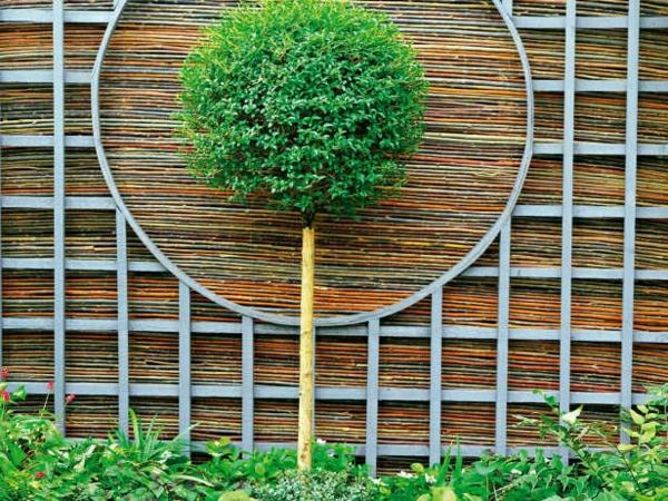 Feng-Shui-Garten-Bonsai-Baum-Bambus-Sichtschutz-