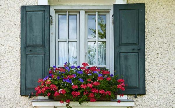 Fensterladen-aus-Holz-grüne-Farbe-
