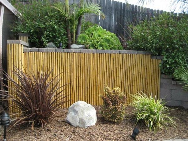 Sichtschutz-Bambus-für-den-Garten-