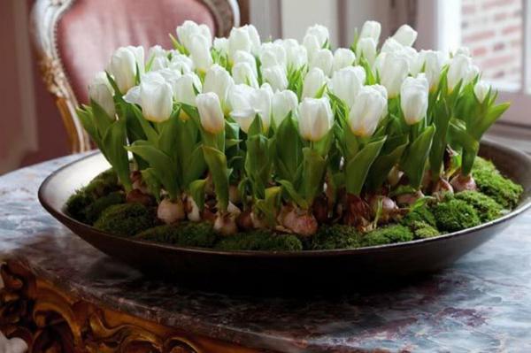 Tischdeko-mit-weißen-Tulpen-Frühling