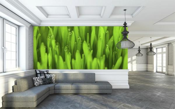 Wand-.in-Grüntönen-Fototapete