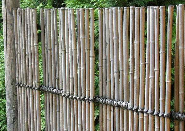 Bambus Sichtschutz - schön und öko-freundlich! - Archzine.net