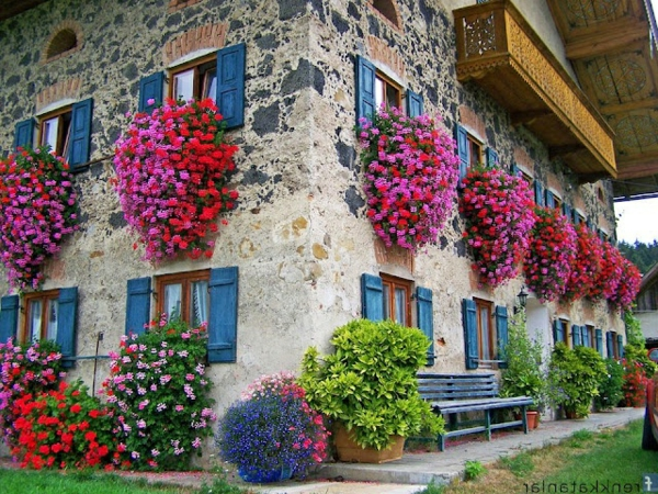 Blumenkasten f r balkon wundersch ne bilder - Winter flowers for balcony ...