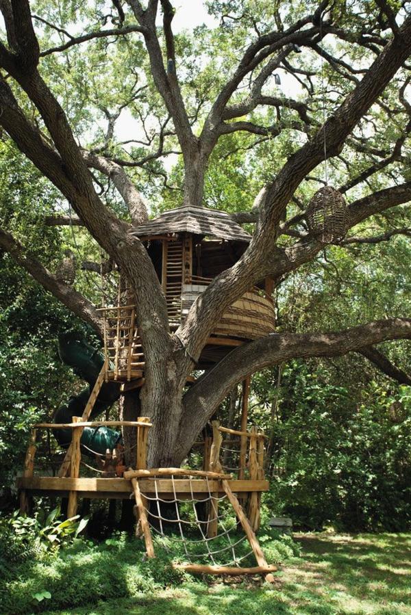fantastische-Idee-Baum-im-Haus-