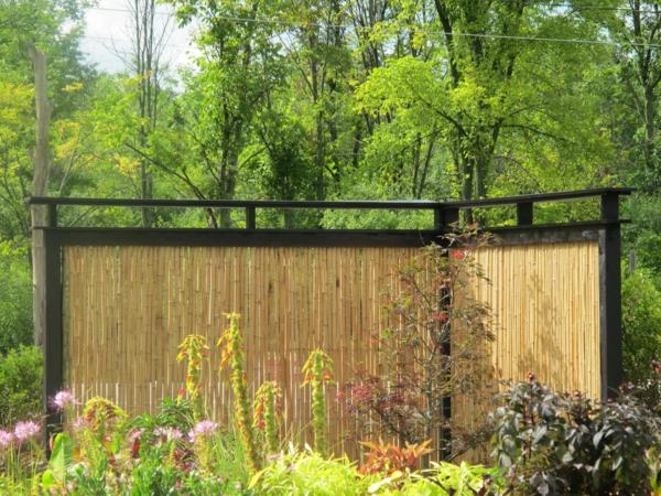 fantastischer-Bambus-Sichtschutz-Garten