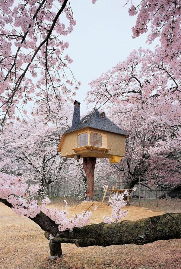 fantastisches-Haus-am-Baum-