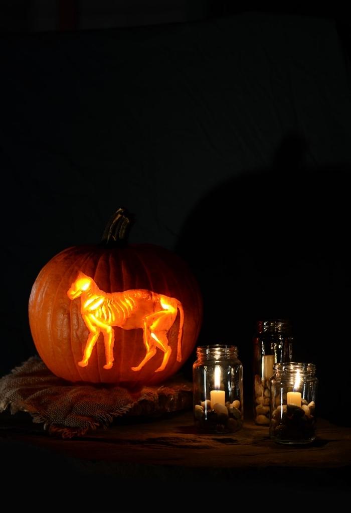 geshcnitzter kürbis, laternen basteln, kürbisdeko ideen halloween, katze