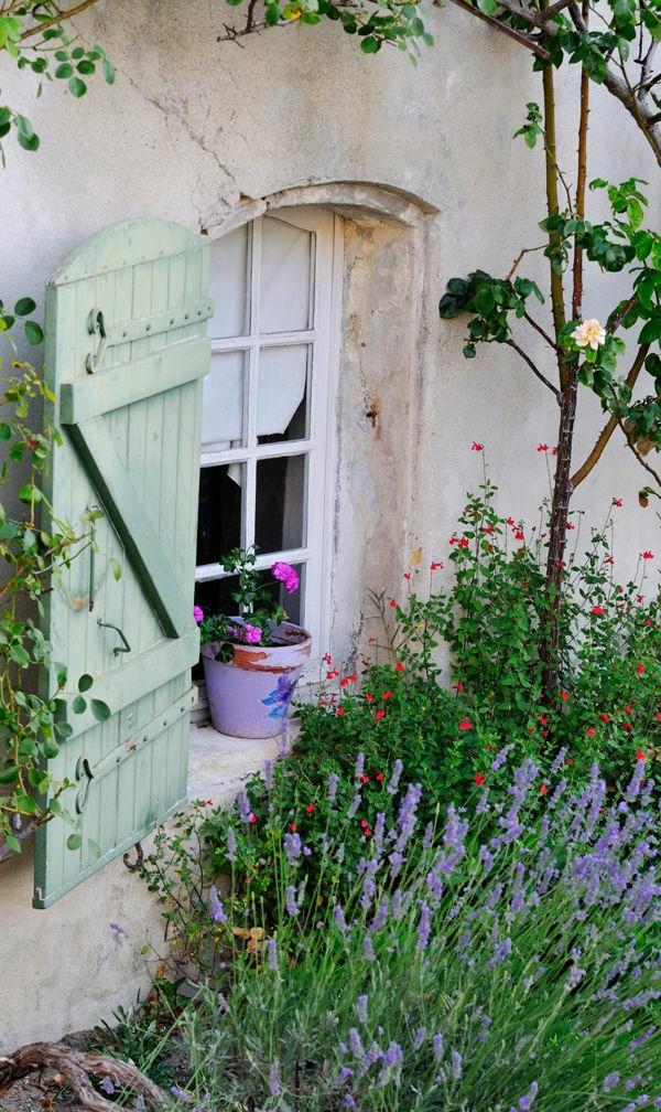 grüne-Fensterladen-Holz