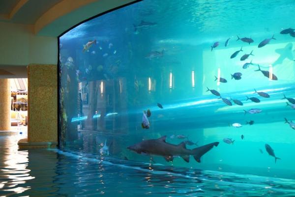 interessantes-fertig schwimmbecken