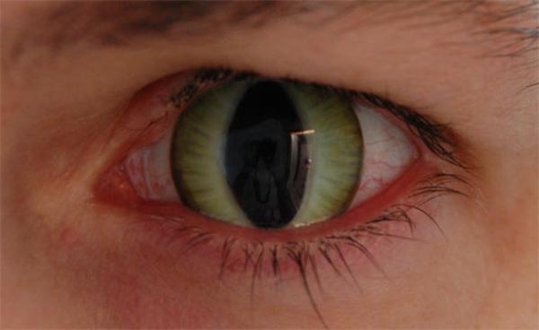 kontaktlinsen-für-halloween-wie-die-augen-einer-katze