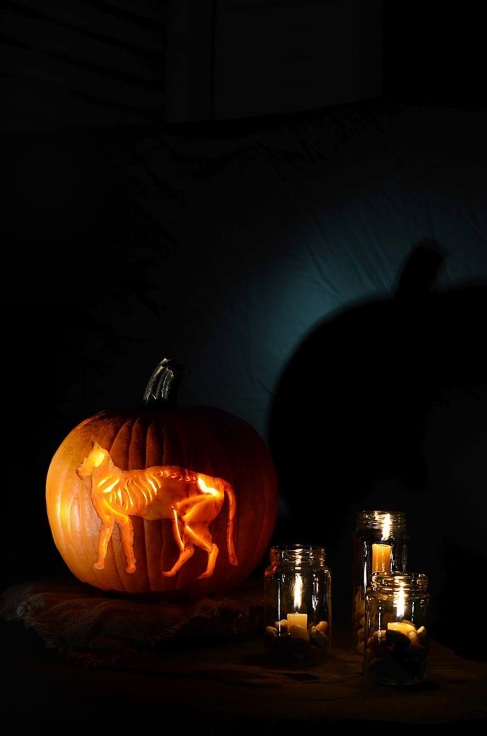 kürbis schnitzen vorlage, laterne mit katze, halloween deko basteln, kerzen in einmachgläsern
