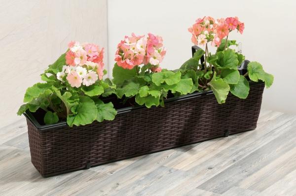 Blumenkasten für Balkon - wunderschöne Bilder! - Archzine.net