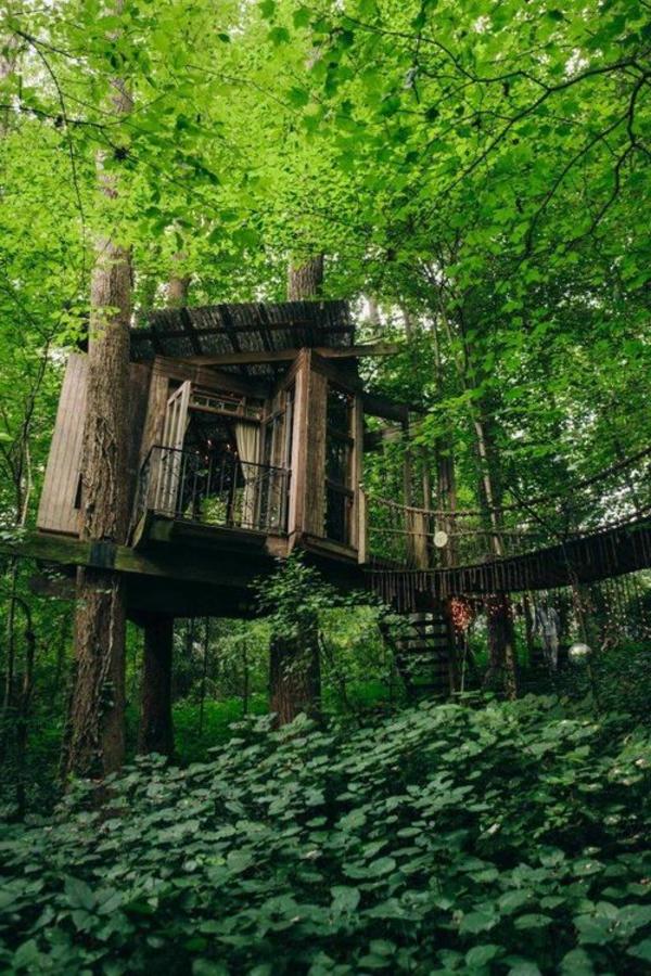 Ein super Baumhaus - erstaunliche Fotos!