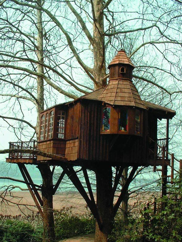 Haus-am-Baum