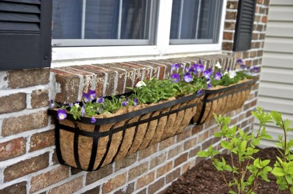 origineller-Blumenkasten-für-den-Balkon-Veilchen-Blumenkasten für Balkon