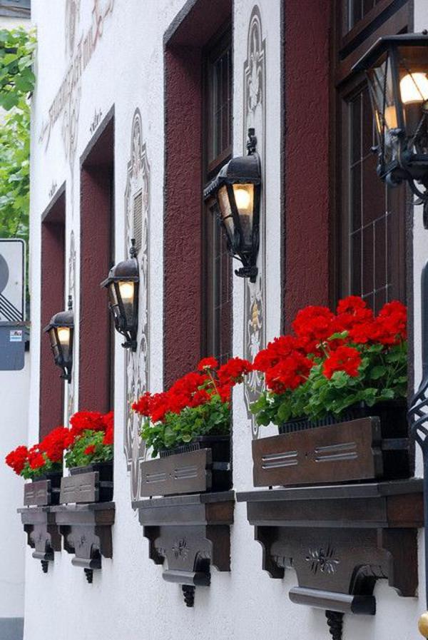 schöne-Blumenkästen-für-den-Balkon