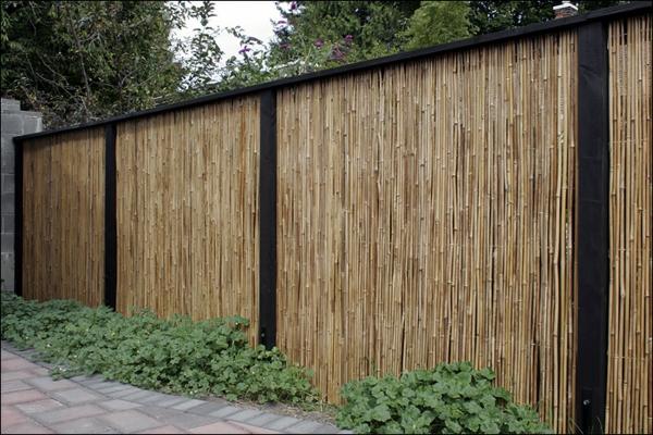 schöner-Sichtschutz-Garten-Bambus