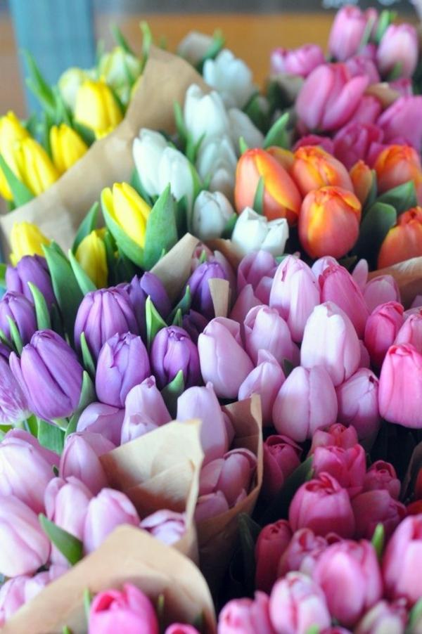 super-schöne-Tischdeko-Tulpen-mehrfarbig