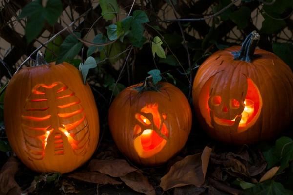 tolle-Halloween-Kürbis-Gesichter-