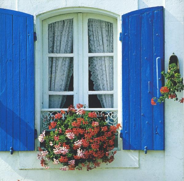 tolles-Fenster-mit_weißen_Rahmen
