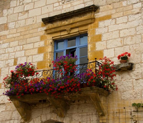 schöner Geländer mit roten Blumen