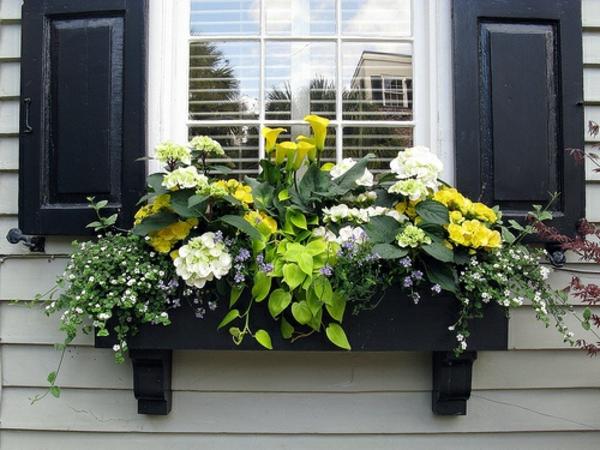 wunderschöner-Blumenkasten-für-den-Balkon