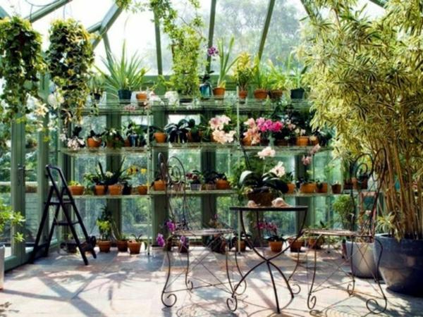 Metall-Stühle-Tisch-Blumen-Zimmerpflanzen-wintergarten-gestalten