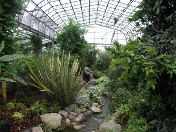 grüne-exotische-pflanzen-im-wintergarten