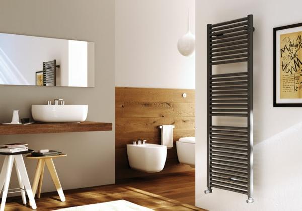 heisswasser-badheizkorper-vertikal-modern-