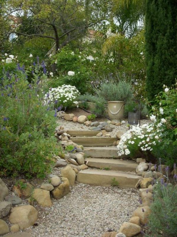 moderner-steingarten-grüne-pflanzen