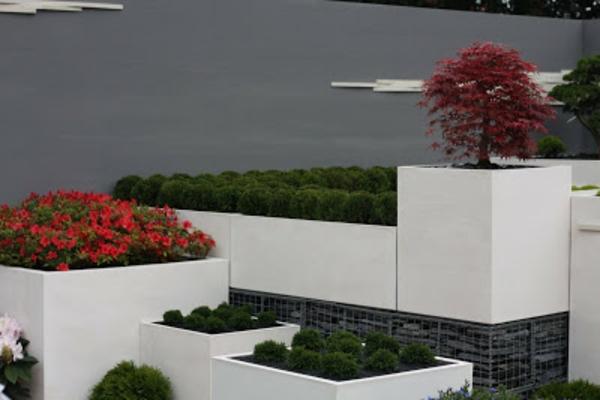 moderner-steingarten-kontrastierende-farben