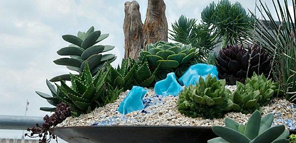 moderner-steingarten-mini-steine