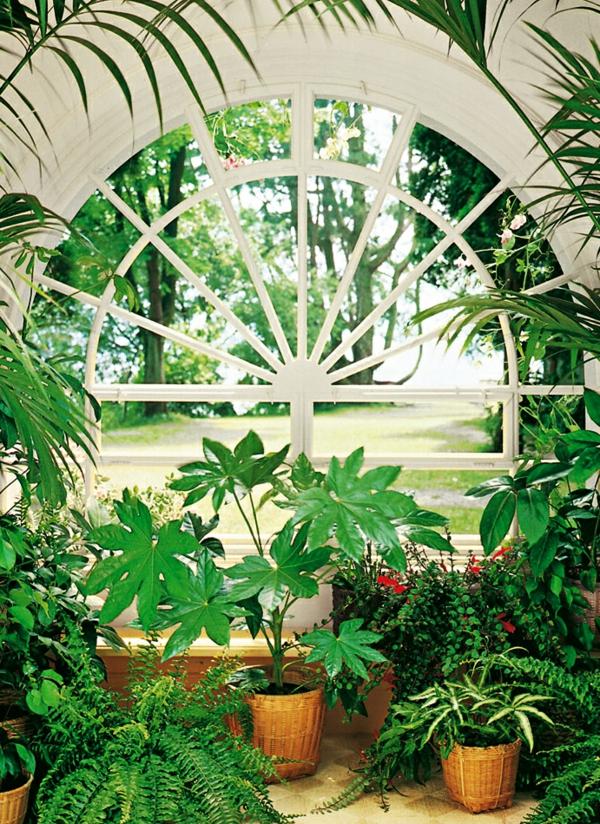 wintergarten-gestalten-schöne-pflanzen