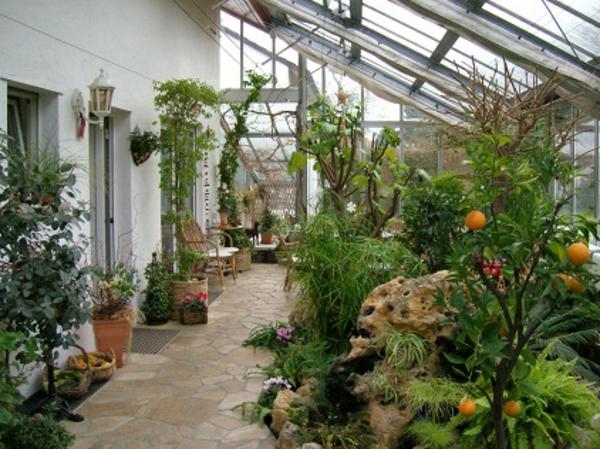 wintergarten-pflanzen-seh-schön