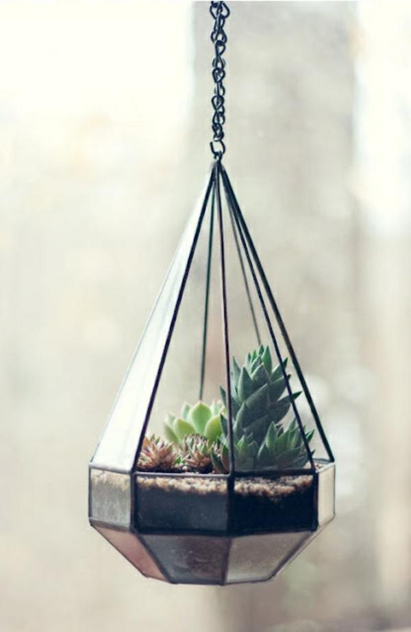 terrarium einrichten- hängendes modell