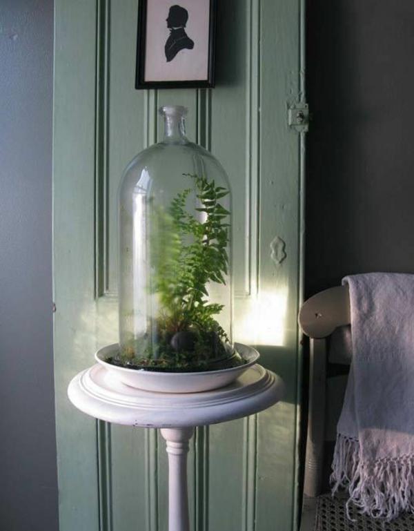 terrarium einrichten - vor einer blauen tür
