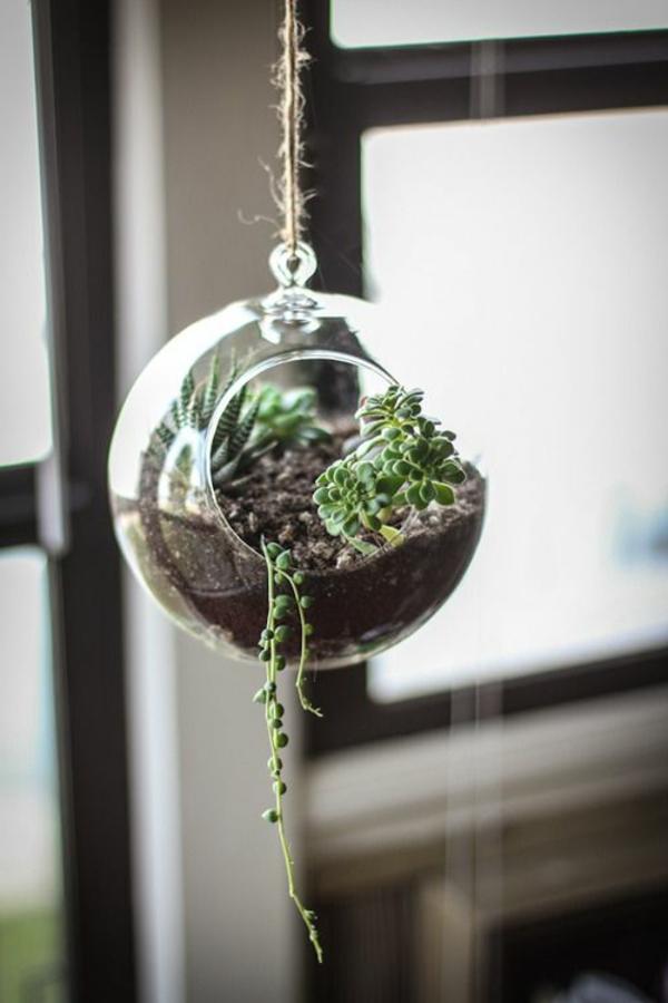 terrarium einrichten- hängendes design