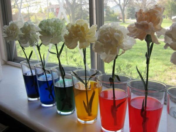 bastelideen für kindergarten - weiße blumen im bunten wasser - ganz neben dem fenster