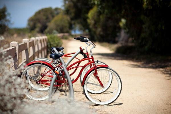 Edelstahl-Fahrrad-Ständer-cooles-Design