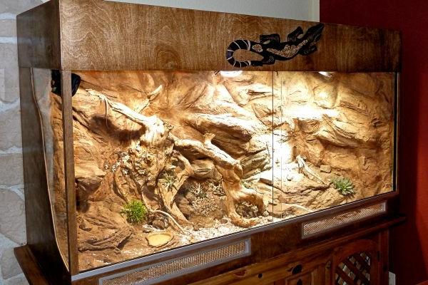 schönes modell vom terrarium - sehr groß