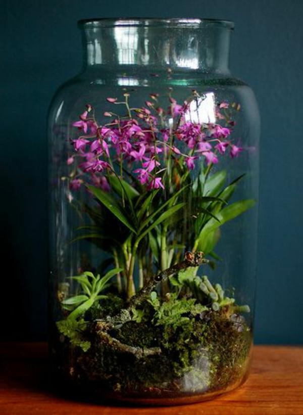 terrarium mit schönen blumen drin