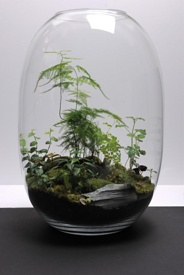 terrarium einrichten- sehr schick und elegant aussehen